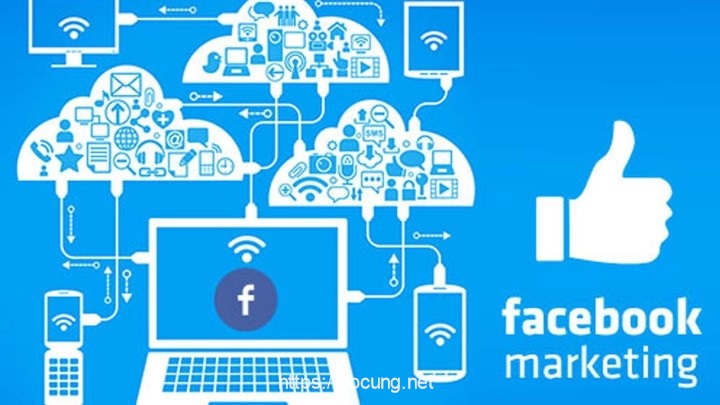 dao tao facebook marketing o tphcm