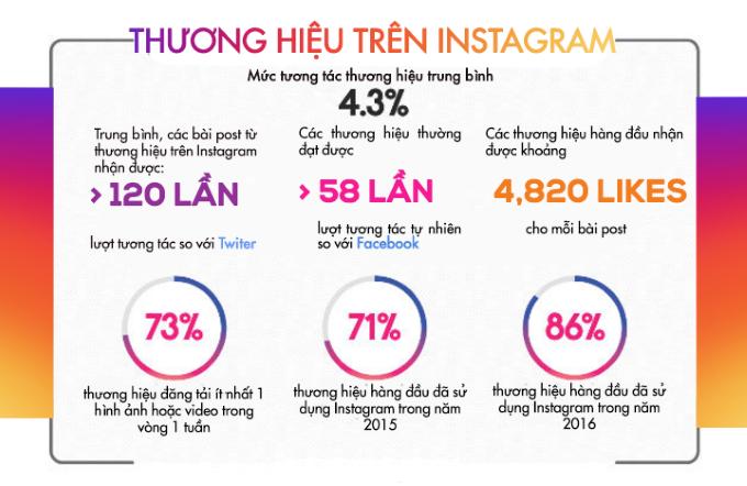 thuong hieu tren instagram